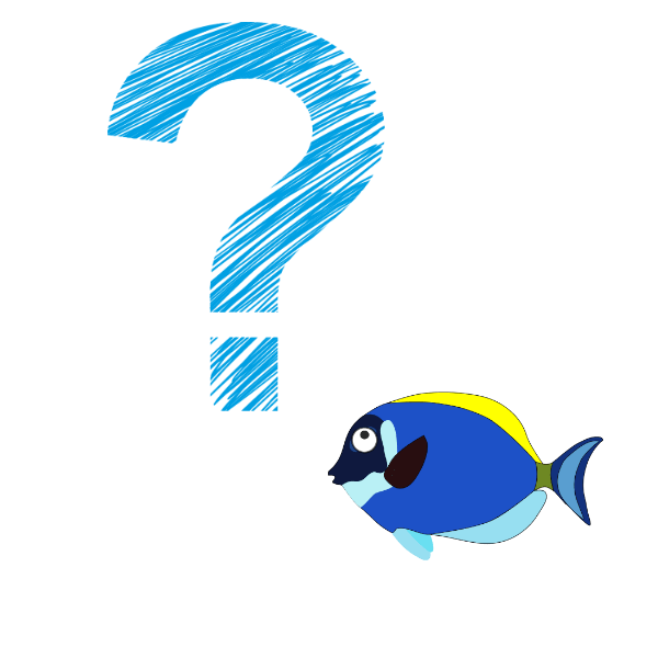 Puzzled fish question mark